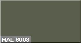 """Фото 7 - Колеровка  1 доза по цвету RAL/РАЛ 6003 Оливково-зеленый (база """"С"""", на 0,9л краски)."""