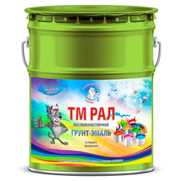 """Фото 1 - TM6002 Грунт-Эмаль """"ТМ РАЛ"""" уретано-алкидная 3 в 1 цвет RAL 6002 Зеленый лист, антикоррозионная,  полуглянцевая для черных металлов, 20 кг """"Талантливый маляр""""."""