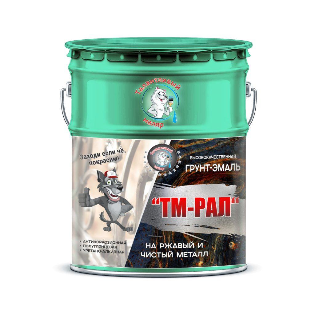 """Фото 1 - TM6000 Грунт-Эмаль """"ТМ РАЛ"""" уретано-алкидная 3 в 1 цвет RAL 6000 Платиново-зеленый, антикоррозионная,  полуглянцевая для черных металлов, 20 кг """"Талантливый маляр""""."""