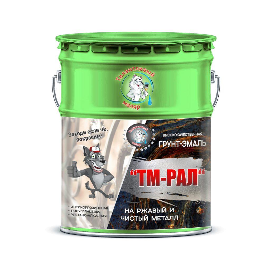 """Фото 1 - TM6017 Грунт-Эмаль """"ТМ РАЛ"""" уретано-алкидная 3 в 1 цвет RAL 6017 Майская зелень, антикоррозионная,  полуглянцевая для черных металлов, 20 кг """"Талантливый маляр""""."""